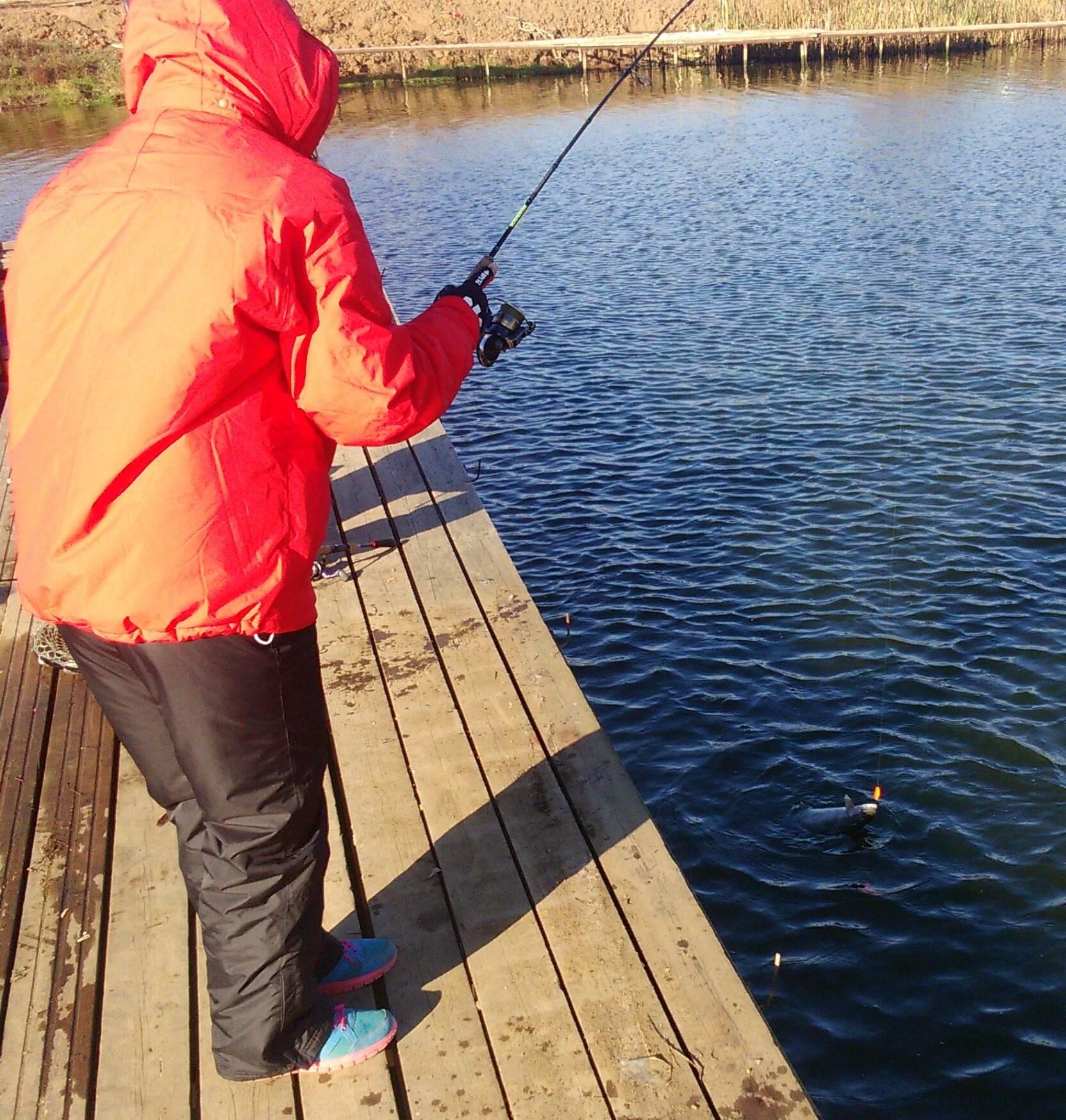 Роял фиш рыбалка форум