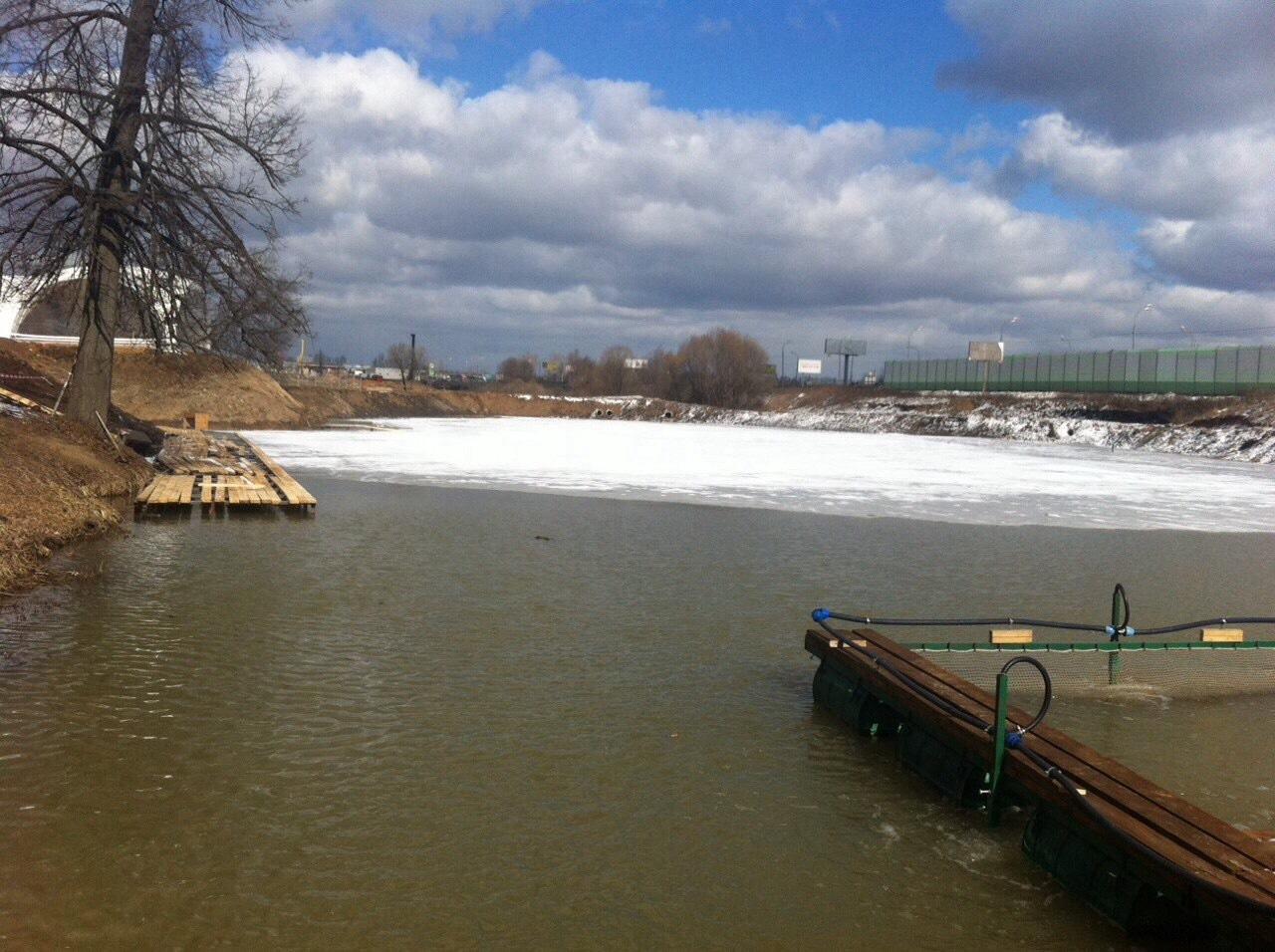 Как организовать пруд для платной рыбалки? Пошаговый 95