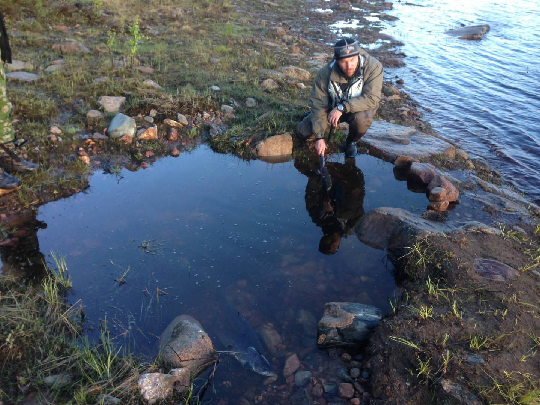 правила рыболовства на кольском полуострове