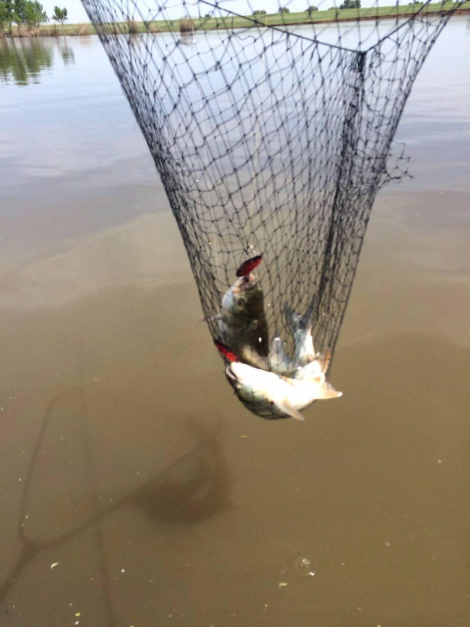 прогноз для рыбалки на неделю в оренбурге