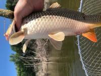 Рыбалка на природе