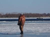 Рыбный день (Декабрь)