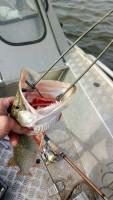 Рыбалка октября